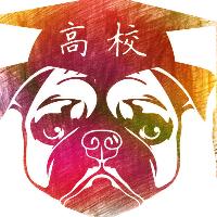 南京高校狗实习招聘