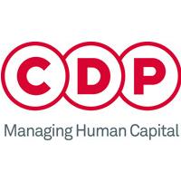 CDP实习招聘