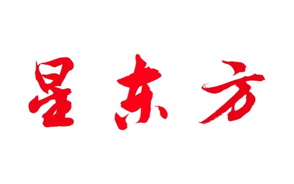 星东方招聘实习生-大连高新区星东方文化艺术培训学校